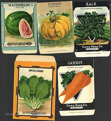 5 Vintage Damaged Seed Packets, Craft Project, Kitchen Decor, 105