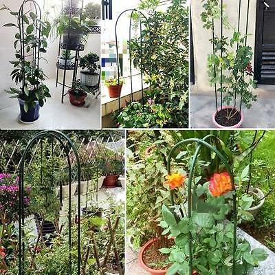 Garden Plant Support Green Vines Pot Climbing Growing U Shaped Arched Stand Rack