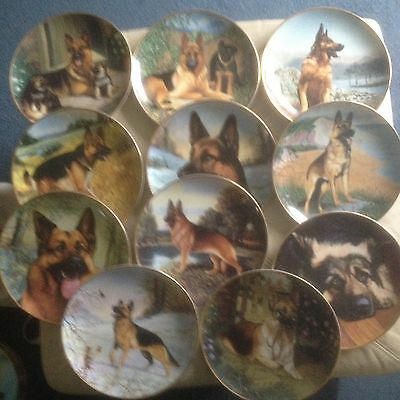 The German Shepherd Plate Collection
