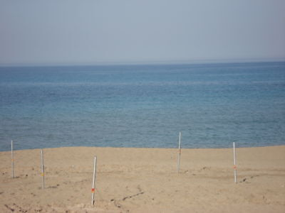 Penthouse Apartment To Rent Protaras Cyprus With Pool, Includes Wifi