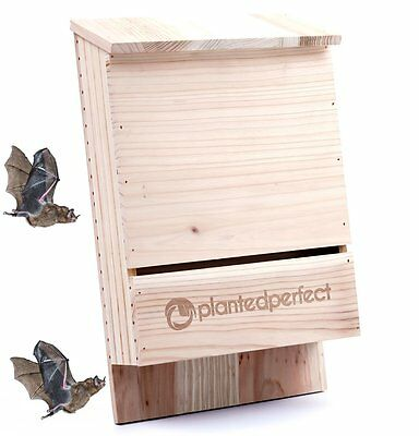 BAT HOUSE PEST CONTROL - Bats Shelter Protects Home From Mosquitoes and Bugs - -