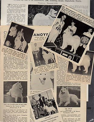 Samoyed, 109 Breed Kennel Clippings from Dog Magazines 1950's-70's, History