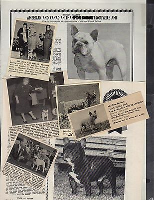 French Bulldog, 64 Breed Kennel Clippings from Dog Magazines 1950's-70's
