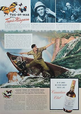 """1941 PRINT AD CANADIAN CLUB WHISKY tropic adventurer """"chasing butterflies"""""""