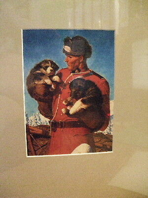 Canadian Mountie Rcmp  Nwmp Officer & Husky Pups  Arnold Frigerg Dry Mount Print