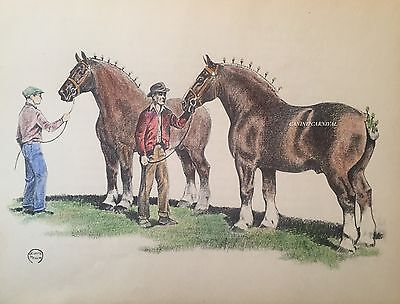 JEANNE MELLIN VINTAGE 1963 PRINT Hand Colored Clydesdale HORSE DRAFT SHOW READY