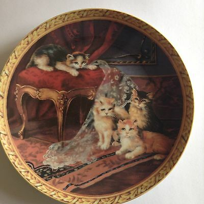 Regency Kittens Collection - The Missing Curtain (Collector's Plate)