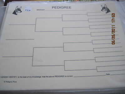Manchester Terrier Head Blank Pedigree Sheets Pack 10