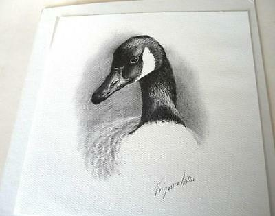 Old Pen & Ink Drawing of a Goose , Signed by Virginia Miller