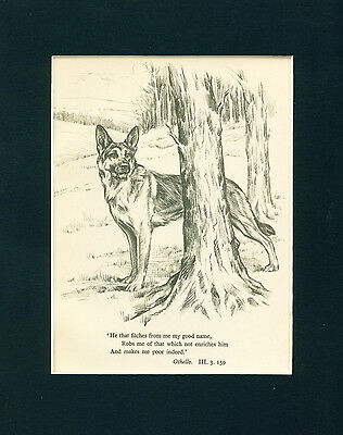 Dog Art Print 1934 German Shepherd by KIRMSE Vintage