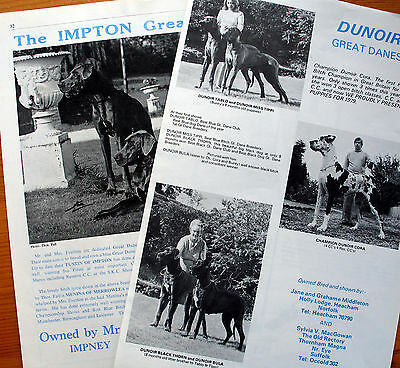 GREAT DANE DOG BREED KENNEL CLIPPINGS 1970s  x 40