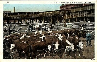Ak Chicago Illinois USA, Cattle Pens, Union Stock Yards, Schlachthof - 1672830