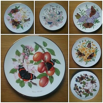 Royal Grafton The Beauty Of Butterlies Wall Plates Set Of 6 Bradford Exchange