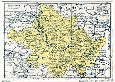 1923 map of Ireland: County Tyrone antique ready-mounted print SUPERB