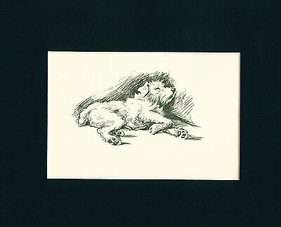 VINTAGE Dog Print 1936 Jack Russell sleeping relaxing Terrier by Lucy Dawson