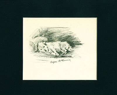 2 VINTAGE Dog Prints 1936 Jack Russell Terrier Before After Trim by Lucy Dawson