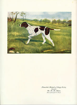 Dog Print 1930's Pointer Dog by Hendee named Nancolleth Markall of Happy Valley