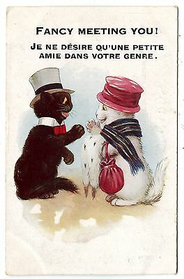 """CHATS HUMANISéS.""""GENTLEMAN.LADY"""" HUMANIZED CATS.CHAPEAU.HAT.COURTISER.COURTING.."""