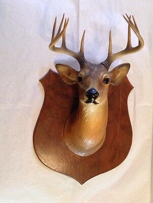 Vintage Deer 10 Point Buck on Wood Plaque- Rare Large Size-1940's
