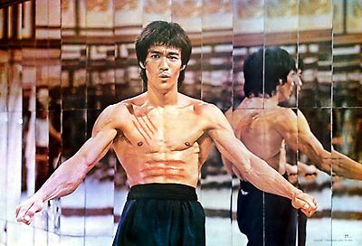 """BRUCE LEE KUNG FU FIGHTER CHINESE MOVIE THE POSTER 21""""x31"""" NEW SHEET WALL P-2250"""