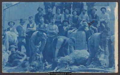 Tocumwal: Shearers and Wool, Hillson Family