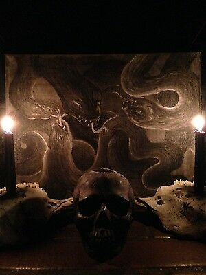 Madness of Serpents Satan Devil Dragon Lucifer Snakes Occult Watain