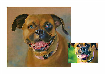 Portraits Pets Paintings Art Commissions Acrylic on Canvas from photos
