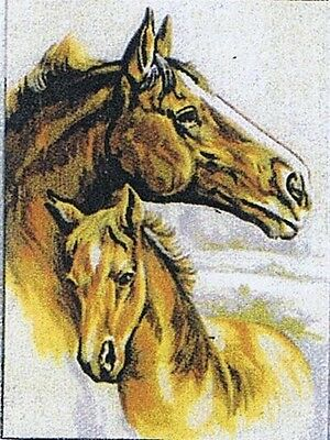 Mare And Foal Horses Tapestry Canvas Gobelin 40 104