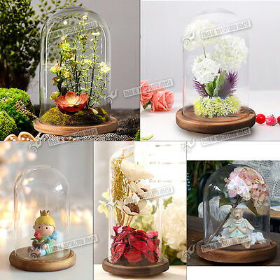 Glass Display Cloche Bell Jar Dome Flower Immortal Preservation Vase Home Decor