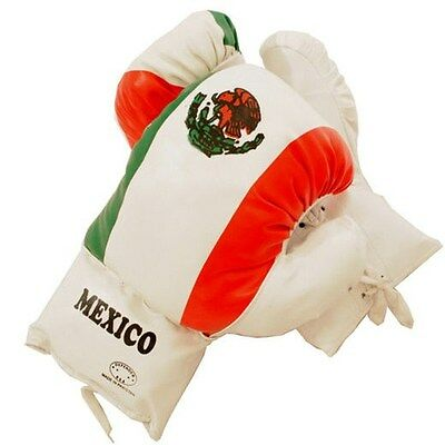 16 OZ BOXING PRACTICE TRAINING GLOVES MMA Sparring Punching Mexico Flag Mexican