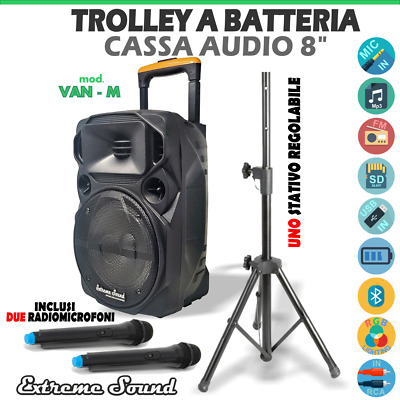 2 CASSE x KARAOKE 1100 WATT con BLUETOOTH - RADIO 2 Microfoni Wireless + Cavo PC