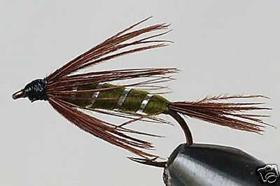 Fly Fishing Flies 45 Carrey Special Woolyworms Mayfly Nymphs Trout Dry Flies