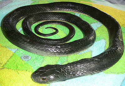 5' Realistic Black Snake Replica - Rubber
