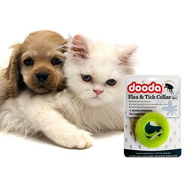 Protection Repel Tick Dog Collar Flea Anti Cat Against Pet Also for people