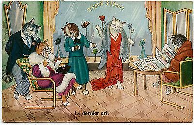 CHATS HUMANISé.CATS HUMANIZED. KATZE . MODE. FASHION. BOUTIQUE. ROBES. CHAT. CAT