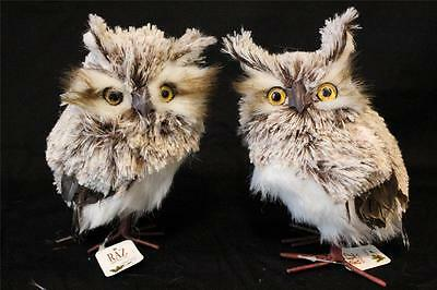 Owl Statue Figurine Faux Taxidermy Lot of 2 Christmas Brown White Owls by Raz