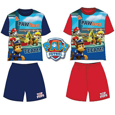 Boys Paw Patrol Top Pups Pyjamas  Set