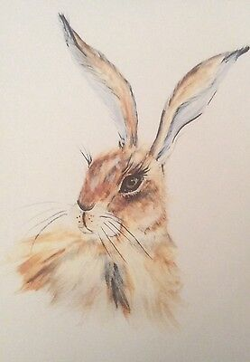 Limited signed print of my original painting A4 pretty hare