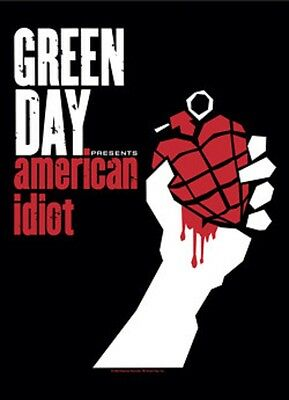 """Green Day American Idiot Fabric Poster 30"""" X 40"""" !"""