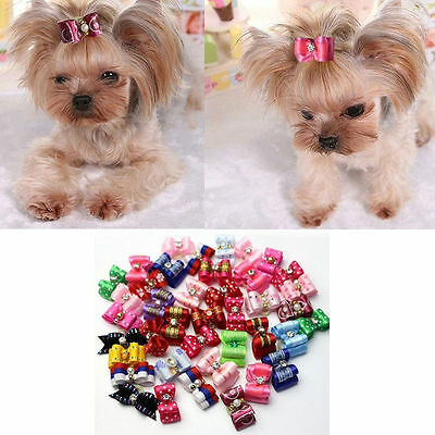 Cute 30PCS/Set Pet Puppy Supplies Dog Hair Bow Grooming Rubber Head Bands Rope