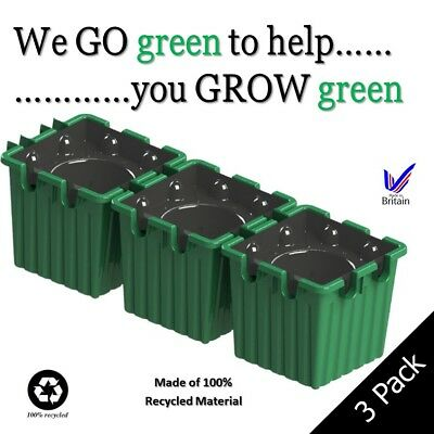 Tomato Growing Kit - Self Watering Up To 4 Weeks 100% Recycled Material used