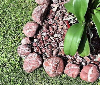 "5 kg Decorative Natural Stones Pebbles ""WILD WINE""  *** HOME & GARDEN & AQUARIUM"