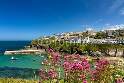"Bild auf Poster: ""Cove and harbour of Port Isaac, Cornwall, England"""