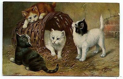 Chat Jouant Dans Un Panier.cat Playing In A Basket. Cat Katze  Chaton Kitten