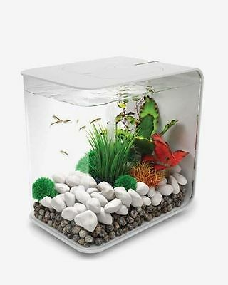 biOrb® FLOW 30 by Oase: Aquarium Kit with Aeration, Filtration & Lighting