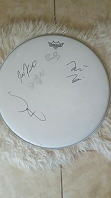 """A Perfect Circle Signed Drumhead LRG 18 3/4"""" Autographed By Entire Band"""