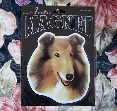 Border Collie Dog Animal Decal Magnet New Sealed
