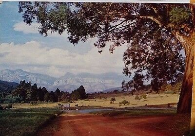 RHODESIA 1970s CHIMANIMANI MOUNTAINS PICTURE POST CARD MELSETTER TO ENGLAND