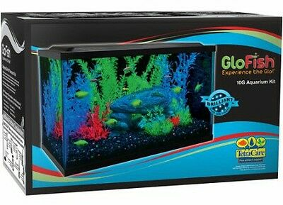 Glow Fish Tank Everything Included