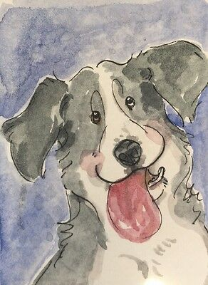 ACEO Border Collie Dog, Happy Smile. A Watercolor Original Art By NFISH